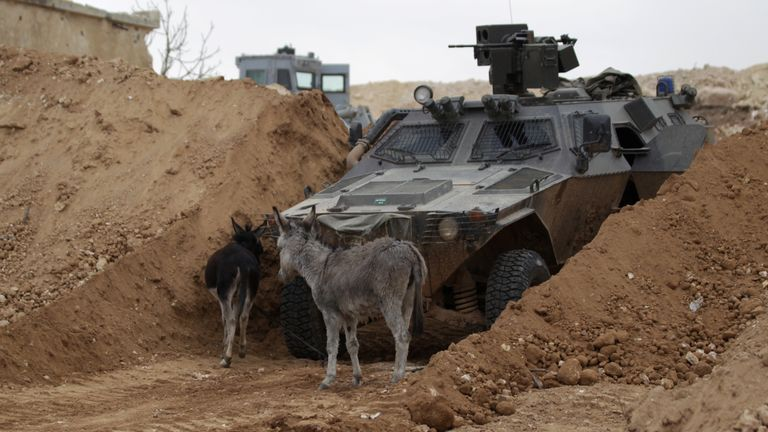 Donkeys walk past a rebel military vehicle on the outskirts of the northern Syrian town of al-Bab