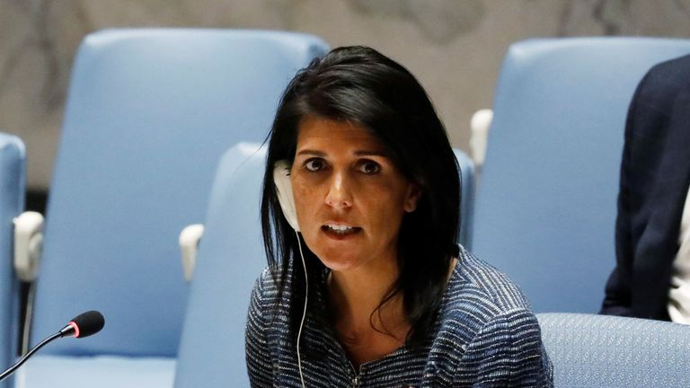 Ms Haley said UN members 'are hoping to get as much information...as we can'