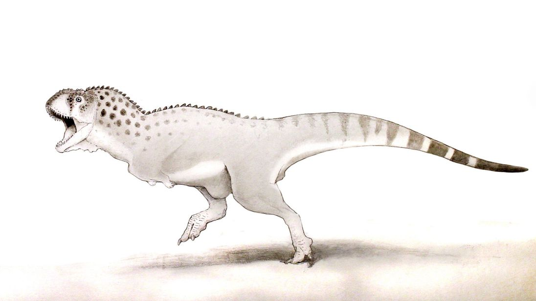 An artist's impression of the Chenanisaurus barbaricus