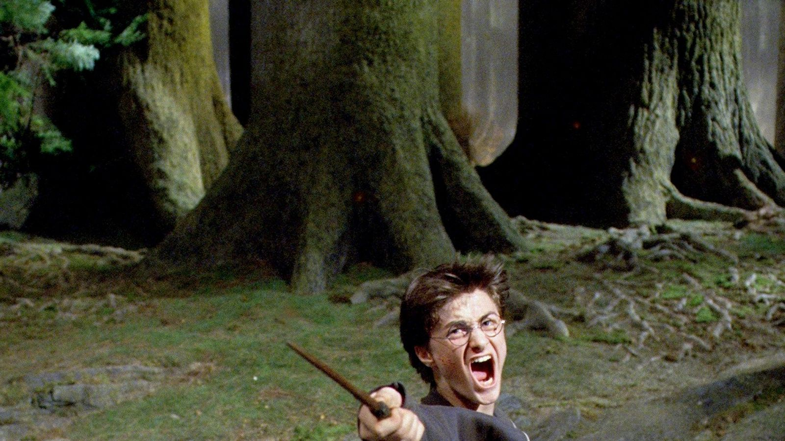 Celebrity Rich List: Who Beat Harry Potter And Harry