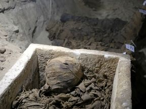 A mummy inside the newly discovered burial site in Minya, Egypt