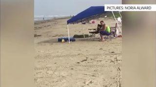 Man arrested for racist rant on beach