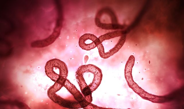 Ebola reported in DR Congo