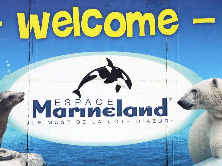 Marineland will fight the new law