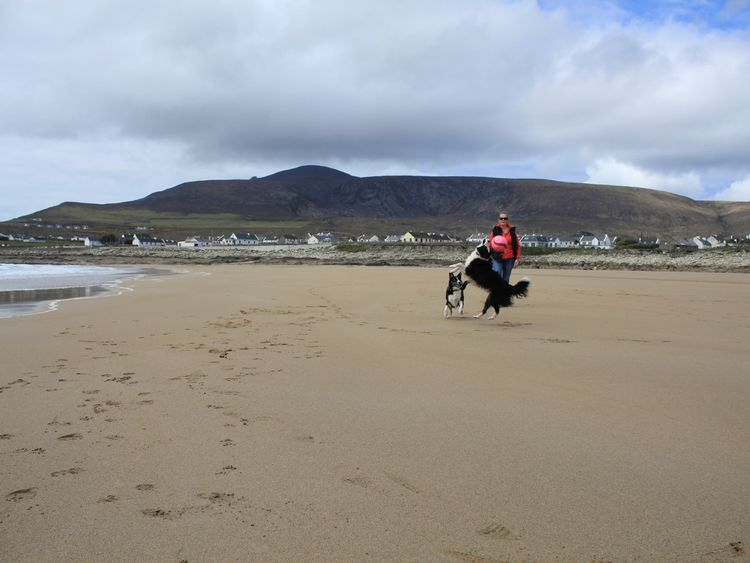 A woman and her dogs make the best use of the new sand