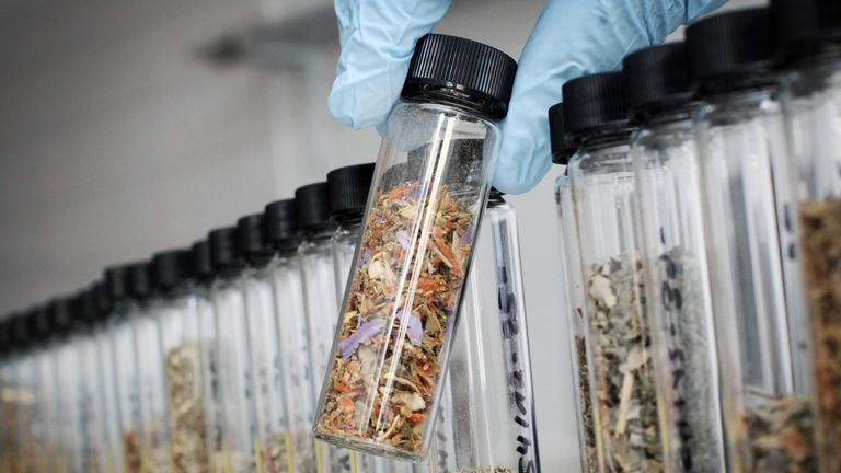 Herbs mixed with drugs for sale as so-called 'legal highs'