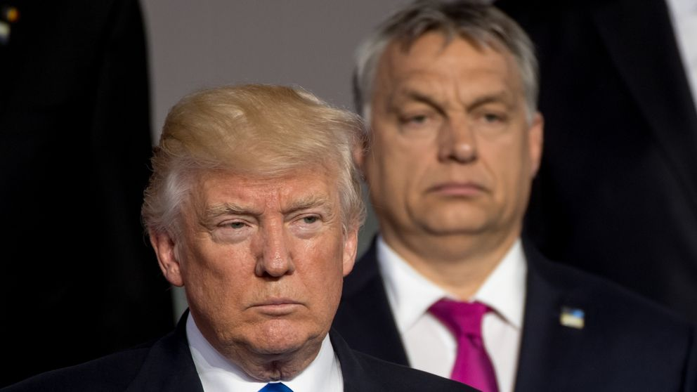 Image result for trump orban