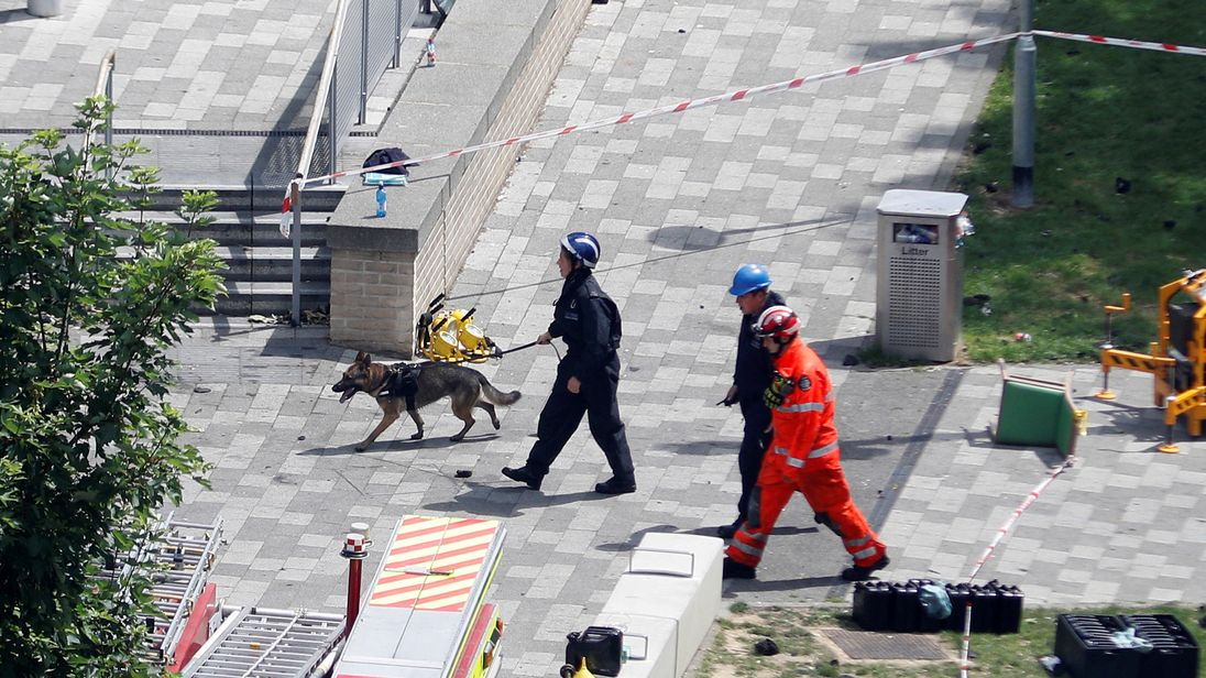 Emergency services personnel and a dog at the scene