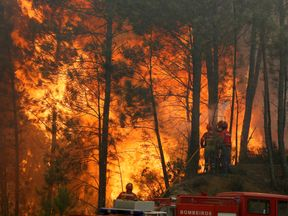 A fire chief has questioned whether the devastating blaze occurred naturally