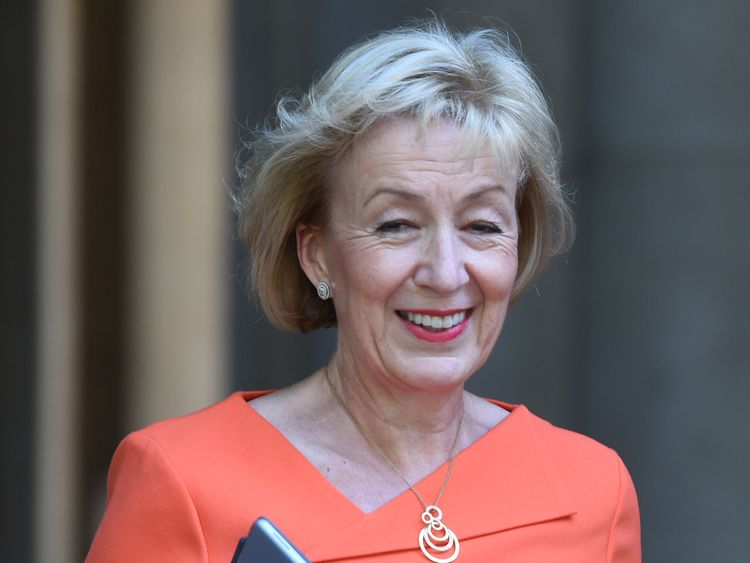 Andrea Leadsom arrives at Downing Street amid a Cabinet reshuffle