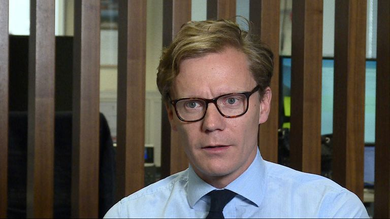 Chief executive of Cambridge Analytica Alexander Nix said the Tories ran an 'absurd' campaign