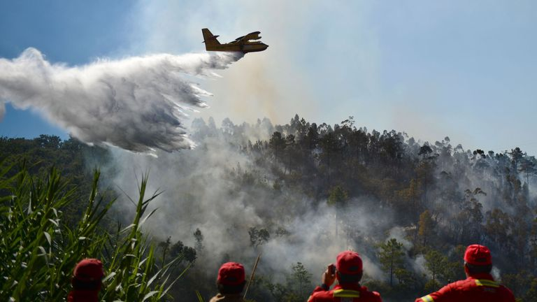 Firefighters watch a firefighter plane trying to extinguish a wildfire at Monchique, Algarve,