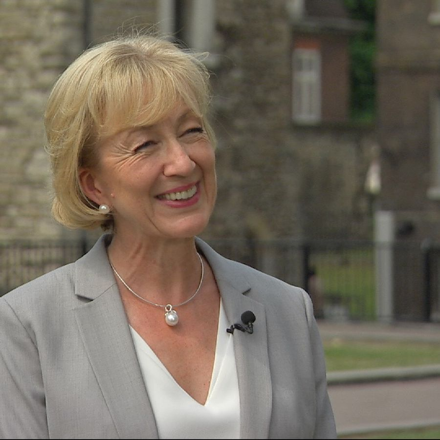 Andrea Leadsom being interviewed outside Westminster.