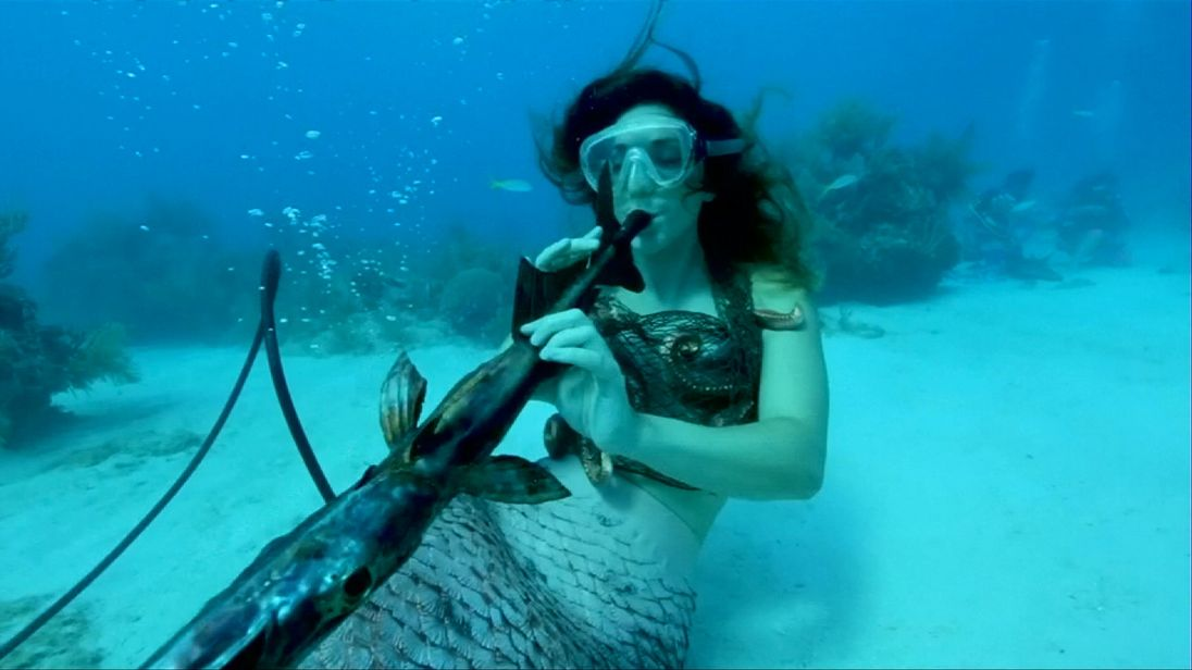Concert to highlight need to preserve coral reefs