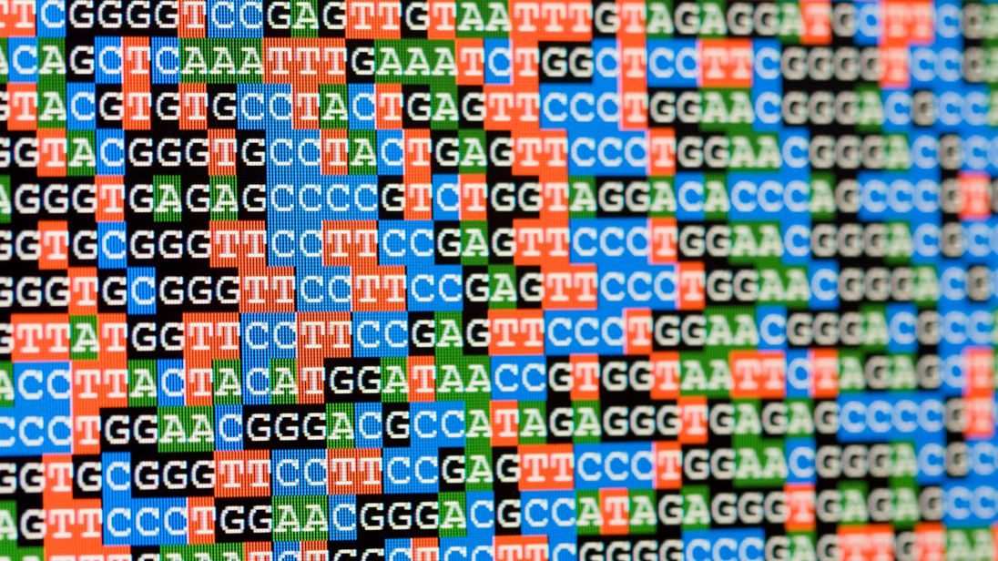 Whole genome sequencing involves unscrambling the entire book of genetic instructions that make us what we are