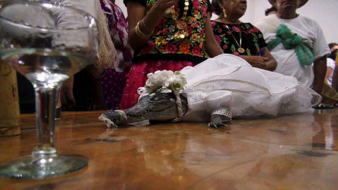The mayor of the southern Mexican fishing town San Pedro Huamelula 'married' a crocodile in a symbolic ceremony on Friday (June 30) a key element of a local harvest tradition.