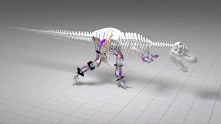 Manchester University scientists say T-rex could not run