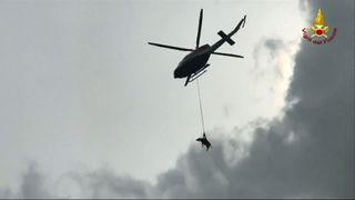 Cow airlifted to safety from a canyon in Italy