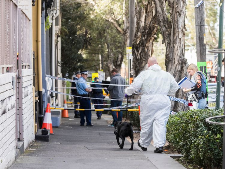 Police carried out several raids on properties in Sydney