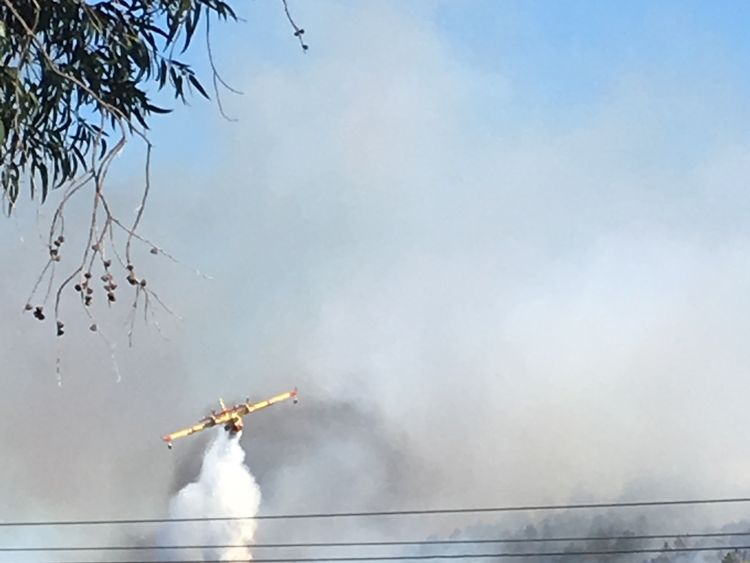A plane works to extinguish a wildfire in Bormes les Mimosas, France