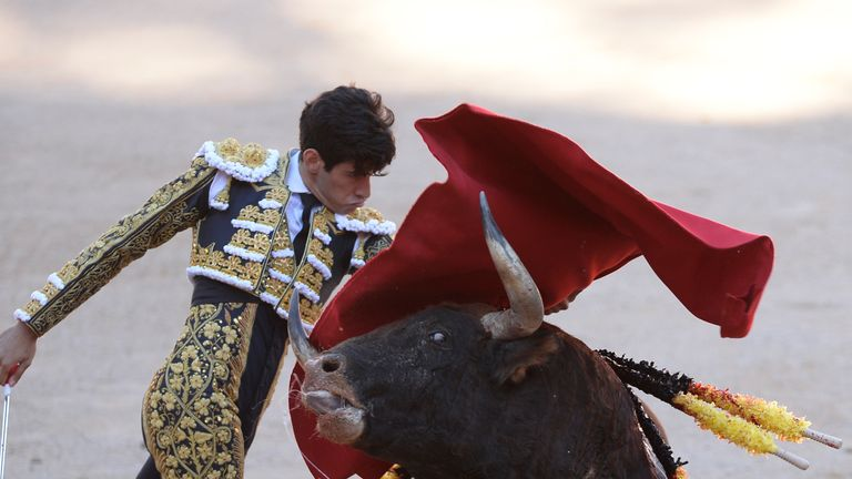 Spanish matador Alberto Lopez Simon performs a pass on a Victoriano del Rio Cortes' fighting bull during the sixth bullfight of the San Fermin Festival in Pamplona, on July 12, 2017. The festival is a symbol of Spanish culture that attracts thousands of tourists to watch the bull runs despite heavy condemnation from animal rights groups. / AFP PHOTO / ANDER GILLENEA (Photo credit should read ANDER GILLENEA/AFP/Getty Images)