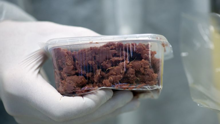 A meat product to be DNA tested at a laboratory in Berlin in February 2013 amid the horsemeat scandal