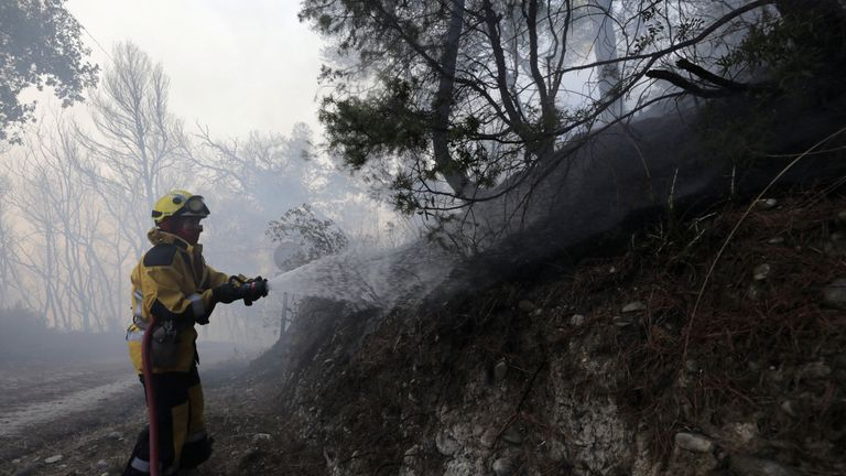 A firefighter sprays water onto trees and brush to fight a wildfire in Carros, near Nice
