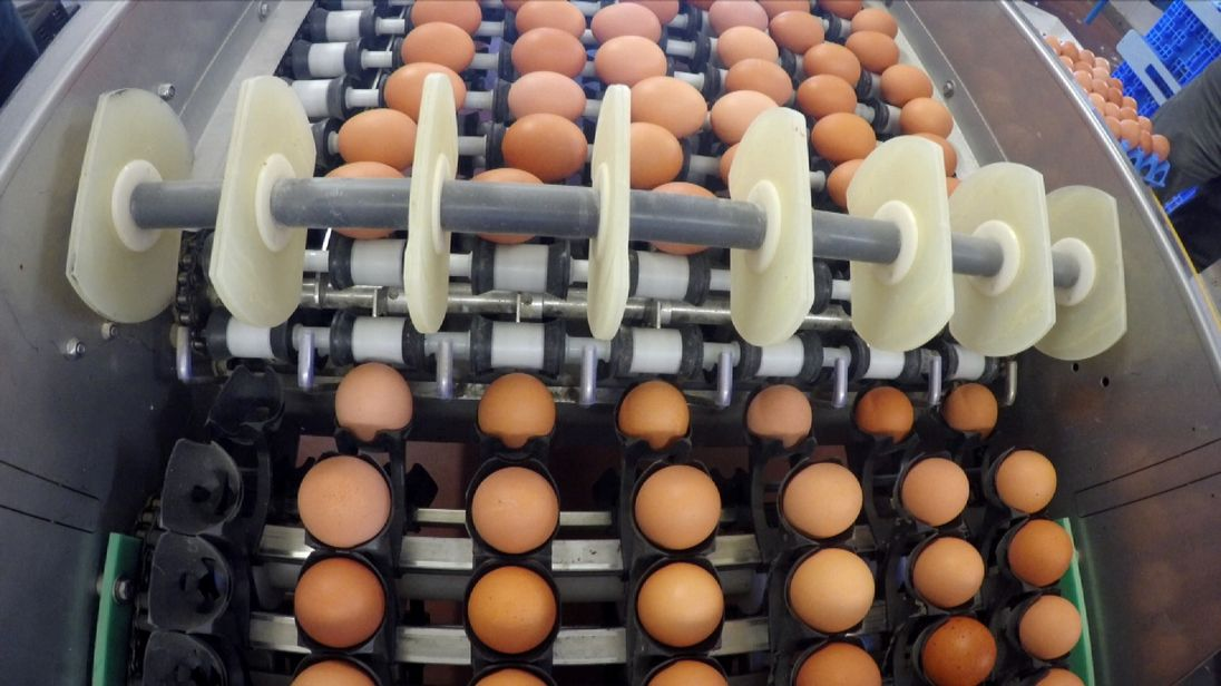 GV of egg production in Europe