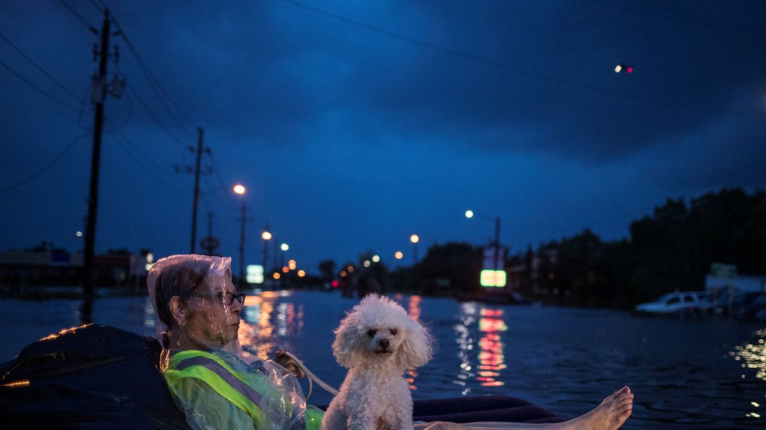 A rescue helicopter hovers in the background as an elderly woman and her poodle use an air mattress to float above flood waters from Tropical Storm Harvey while waiting to be rescued from Scarsdale Boulevard in Houston, Texas, U.S. August 27, 2017