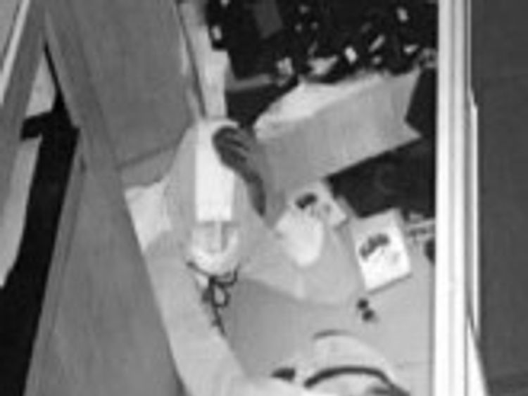 The thieves were caught on security cameras