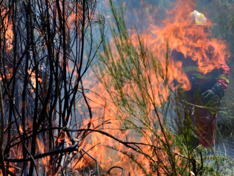 A member of the UME (Emergency Military Unit) fights a wildfire behind flames in Vilardevos, northwestern Spain, on August 4, 2017. / AFP PHOTO / MIGUEL RIOPA (Photo credit should read MIGUEL RIOPA/AFP/Getty Images)