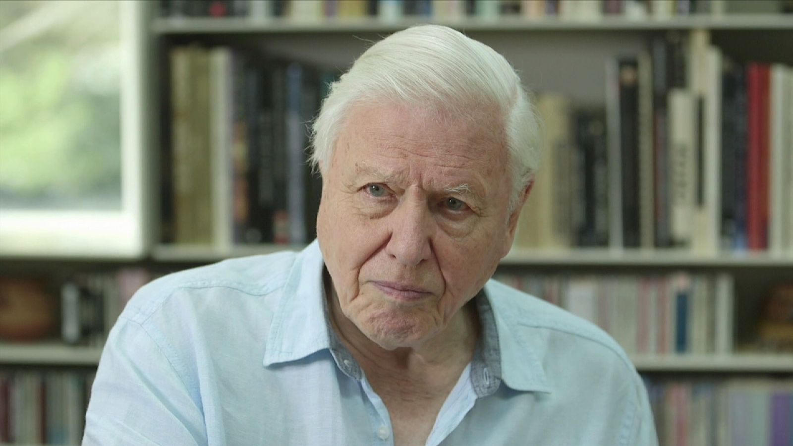 Sir David Attenborough Sea Plastic 39 S Impact On Albatross