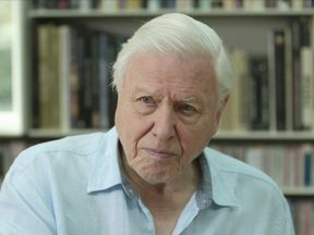 Sir David Attenborough. Pic: Unearthed/Greenpeace