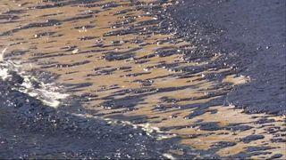 Vessel sinks and leaks  2,500 tonnes of oil onto Greek coastline