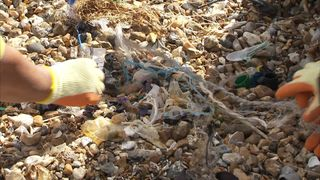 Thousands of volunteers will be heading to beaches across the UK today to help the clear them of rubbish