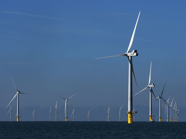 Some of the 116 giant turbines are seen off the coast of Sussex