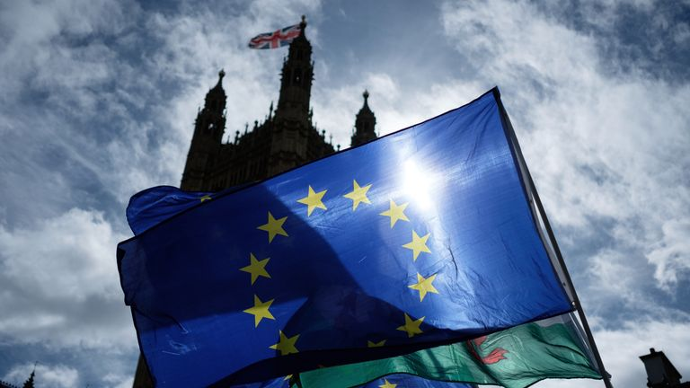 Pro-EU demonstrators wave flags and chant outside the Houses of Parliament before the vote on the bill