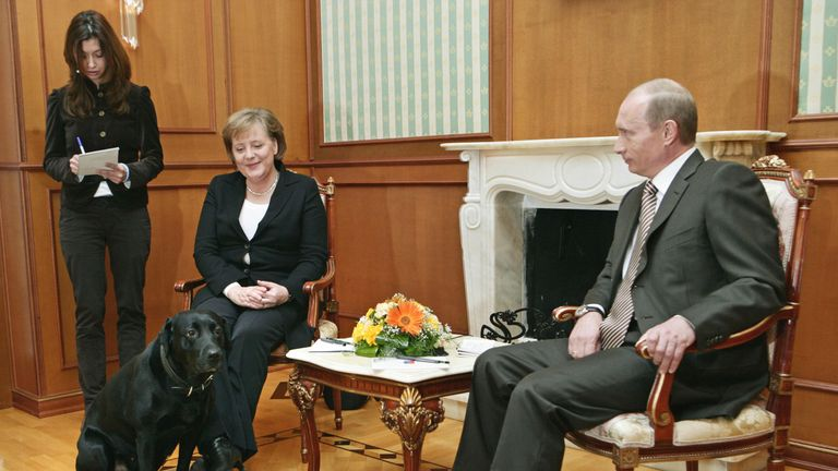 Vladimir Putin brought in his dog Koni during talks with Mrs Merkel, despite her fear of dogs