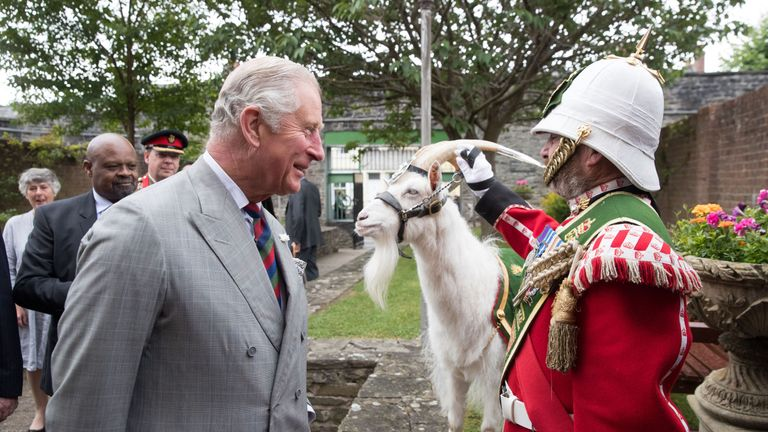 Lance Corporal Shenkin III stays cool as Prince Charles enquires about him