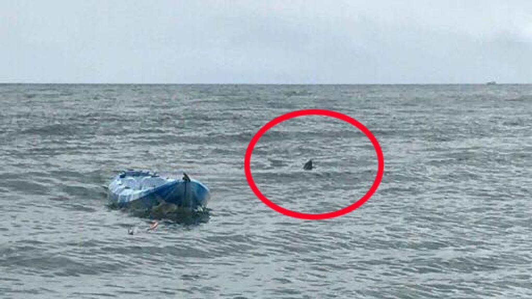 girl 15 survives jaws like shark attack in australia