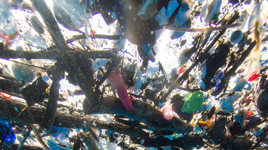 Caroline Power discovered a 'sea of plastic' near the island of Roatán. Pic: Caroline Pwer Photography