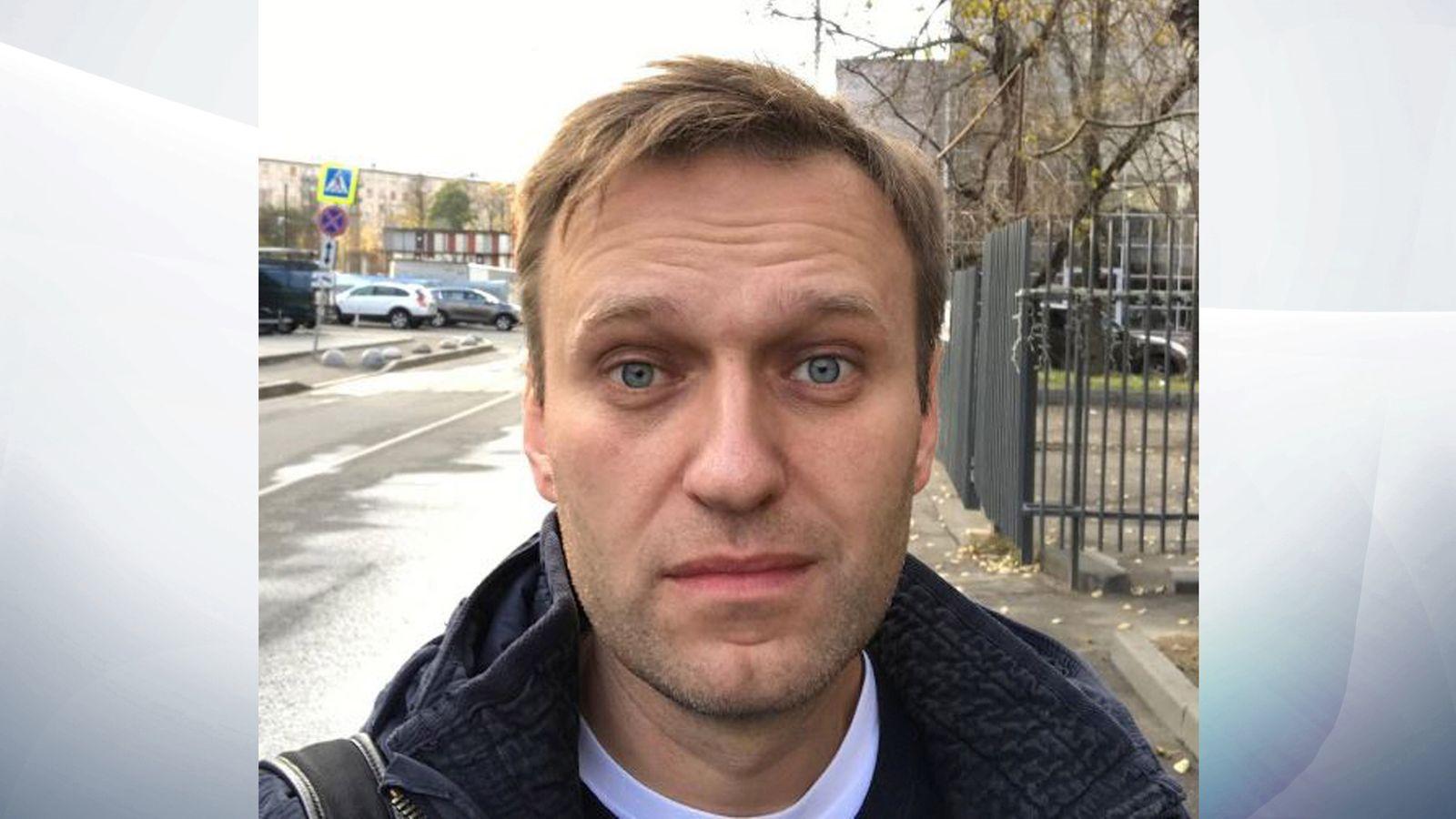 Alexei Navalny: Putin rival freed from jail as Kremlin race heats up