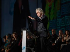 In typical style, Sir Bob didn't mince his words at the opening of the summit