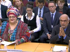Camila Batmanghelidjh and Alan Yentob give evidence to MPs