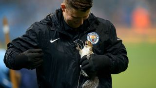 The squirrel invaded the pitch before Manchester City's game against Wolves