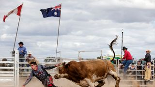 A Rodeo Clown is chased down by a Bull during the Deni Rodeo in Deniliquin, Australia