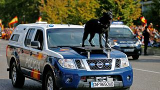 A police dog rides on the front of a patrol car during celebrations to mark Spain's National Day in Madrid