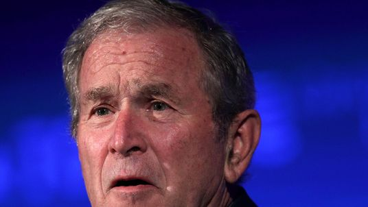 George W Bush worried about US democracy