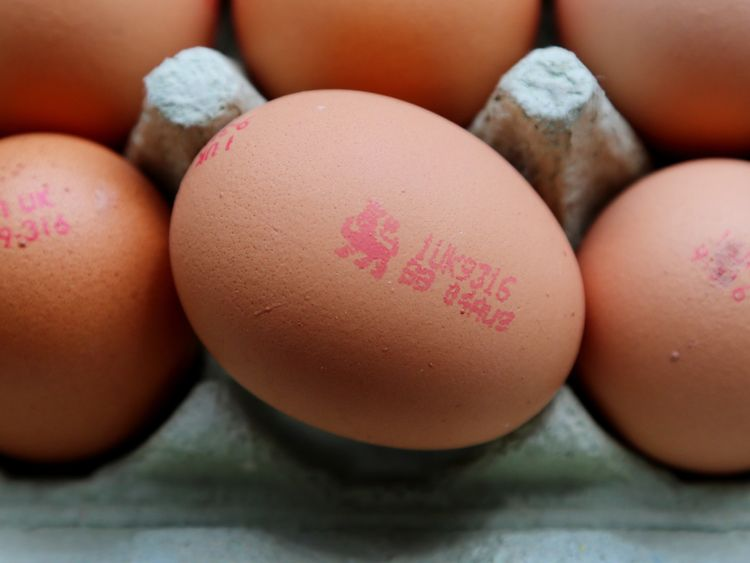 The British Lion Quality Mark on an egg
