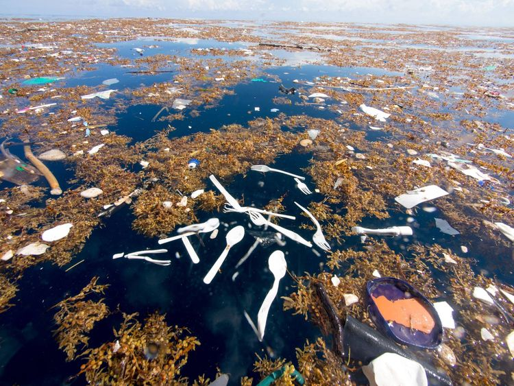 Plastic forks and spoons floating in the water near Roatán. Pic: Caroline Power Photography